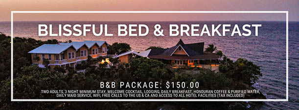 2021 Blissful Summer Bed and Breakfast