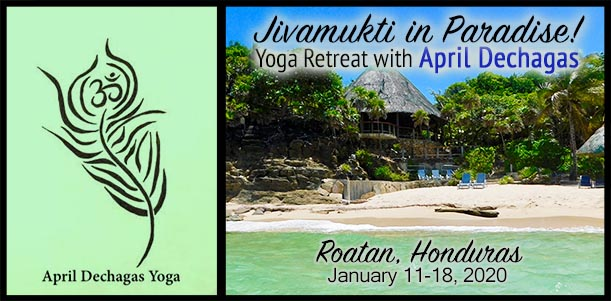 Jivamukti in Paradise - Yoga Retreat with April Dechagas - January 11-18, 2020