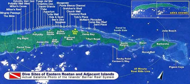 Roatan East End Dive Sites
