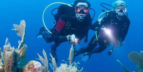 Paya Bay Resort: A PERSONALIZED SCUBA DIVING EXPERIENCE