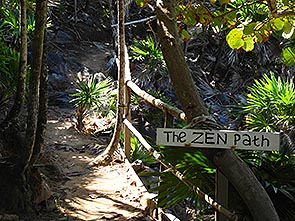 paya bay resort - the zen path